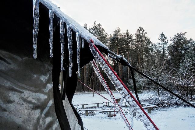 Wildschweine in Winterlandschaft – Winterlager 2018